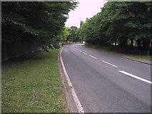 NZ2910 : A167 entering Hurworth Place by Chris Heaton