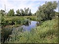 SK5815 : Side branch of River Soar by David P Howard