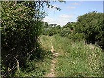 SU4619 : Bishopstoke, Itchen Way by Mike Faherty