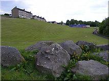 NS4962 : Rocks near Todholm Road by Thomas Nugent