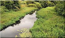 J2967 : Disused Lagan canal near Ballyskeagh (1) by Albert Bridge
