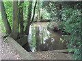 TF4179 : Mill Stream at Claythorpe by John Firth
