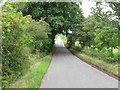 NY5351 : Country Lane towards B6413 by Alex McGregor