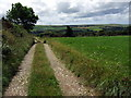 SN0135 : Farm track and footpath by ceridwen