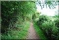 TG2105 : Path to Keswick Mill by N Chadwick