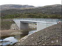 NG1192 : The new bridge at Liceasto by David Purchase