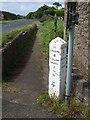 SW8760 : Milestone, Mountjoy by Derek Harper