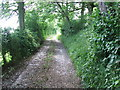 NY7611 : Path by Wyber Hill by David Brown