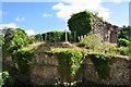 TM3389 : Bungay Castle Keep by Ashley Dace