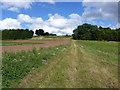 SJ7600 : Bridleway near Badger by Richard Law