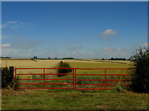 SE9546 : Red Gates at Holme Wold by Andy Beecroft