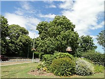 TM5294 : Oulton Village sign and the B1375 by Adrian S Pye