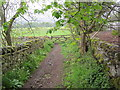 NY9723 : Byway , Mickleton by Les Hull