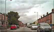 SJ8993 : Gorton Road, North Reddish by David Dixon
