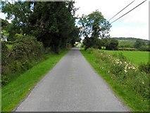 C1009 : Road at Rashedoge by Kenneth  Allen