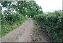 NY7509 : Minor road near Waitby Crossing by David Brown