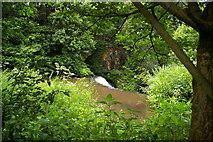 SJ8382 : Quarry Bank Mill Weir by Roger Gittins