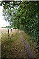 TQ2897 : Footpath Beside Rough Lot by Martin Addison