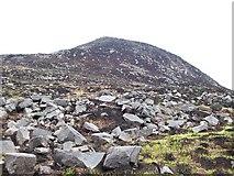 J3629 : Boulder strewn slope of Thomas's Mountain by Eric Jones