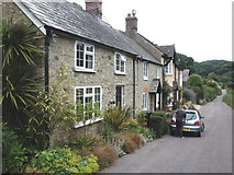SY1988 : Cottages, near Branscombe by Roger Cornfoot