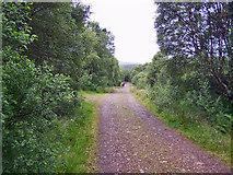 NG7015 : Track from Leitir Fura by Richard Dorrell