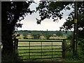 TG1222 : Through the gateway at Booton by Adrian S Pye