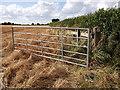 SP2874 : Footpath heading towards Red Lane by John Brightley