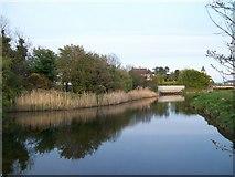 J3731 : The placid Shimna at Islands Park by Eric Jones