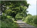 ST5956 : 2010 : Lane to Hinton Blewett by Maurice Pullin