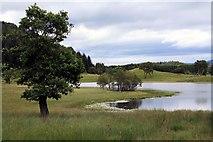 NN6795 : Lochain Uvie by Colin Kinnear