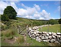 SX6479 : Dry stone wall, East Dart by Derek Harper