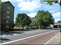 TQ3179 : Summer in Lambeth Road by Basher Eyre