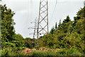 J4877 : Pylons and power lines, Clandeboye Wood by Albert Bridge
