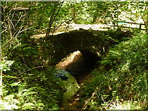 SZ5881 : Shanklin: the stone bridge in the chine by Chris Downer