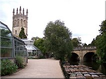 SP5206 : Magdalen College Tower and Bridge from the Botanic Gardens by Raymond Knapman