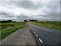 NY8693 : Lay-by on the A68 by Christine Johnstone