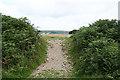 SX5459 : Sparkwell: Boringdon Camp entrance by Martin Bodman