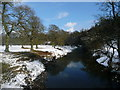 NU1714 : View of river from Monk's Bridge, Hulne Park, Alnwick by Anne Patterson