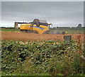 TA0622 : Combining Oilseed Rape near Barrow Haven by David Wright