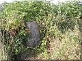 ST7064 : Camouflaged pillar by Neil Owen