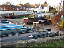 SJ9922 : Great Haywood Junction, Staffordshire - Anglo-Welsh Marina by Liz Taylor