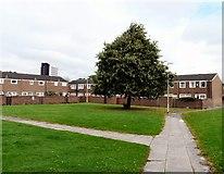 SJ8796 : East Manchester Housing by Gerald England