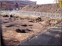 SJ9223 : Town Dig, Tipping Street, Stafford by Liz Taylor