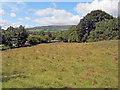 SO3617 : Small meadow at Llanveterine by Trevor Rickard