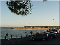 SZ1891 : Mudeford: a sunny view across The Run by Chris Downer