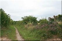 TQ2156 : Bridleway near Round Wood by Hugh Craddock