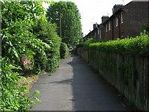 SK4055 : Houses off Gladstone Road Alfreton by Nikki Mahadevan