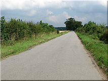 TG1301 : View north-east along Ketteringham Road by Evelyn Simak