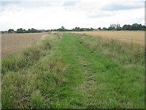 SE8317 : Conservation walk by Jonathan Thacker