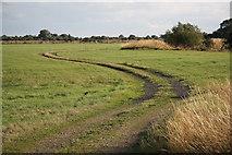 SK8166 : Smithy Marsh by Richard Croft